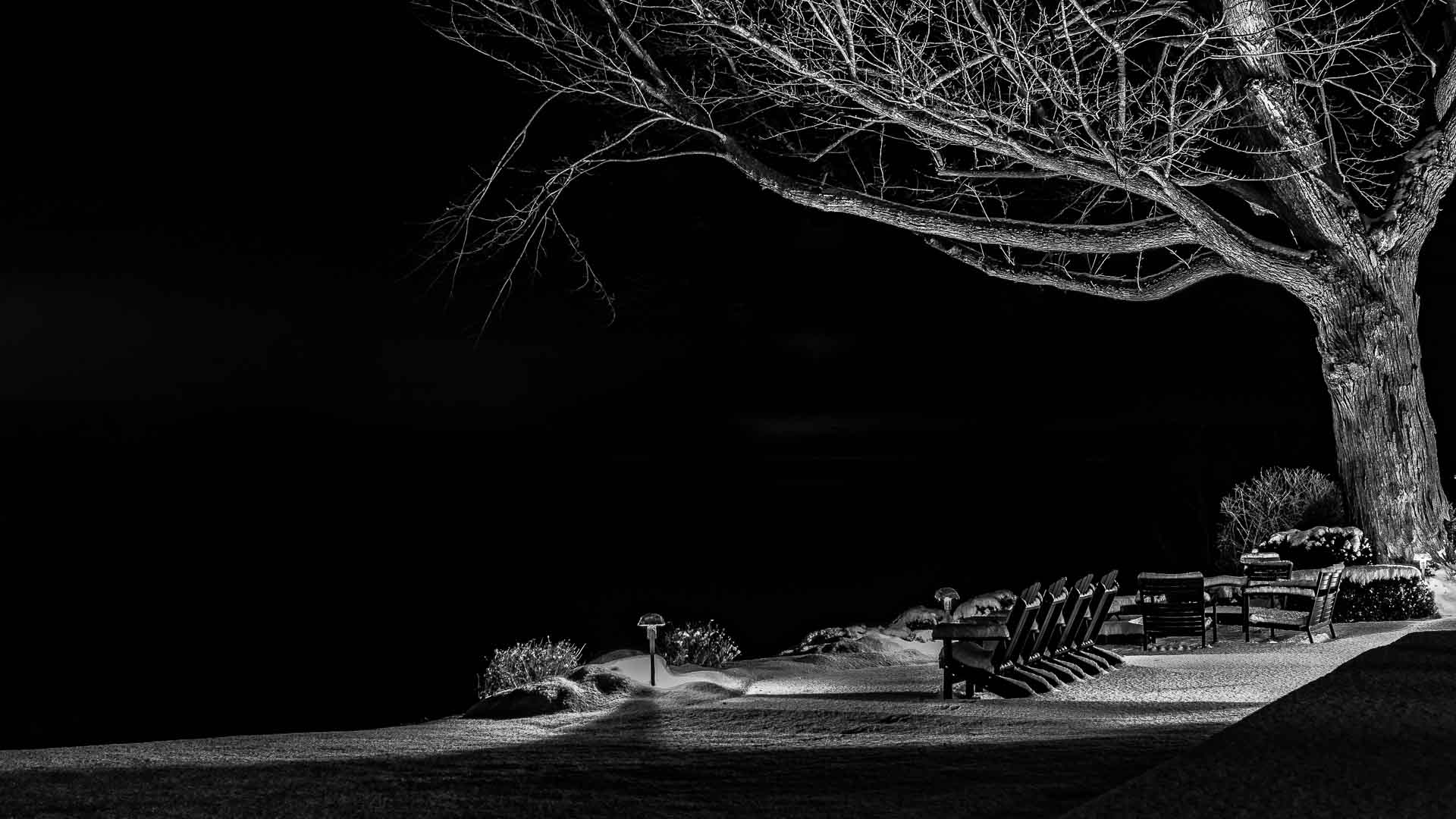 A Wintery Nightscape along Lake Ontario