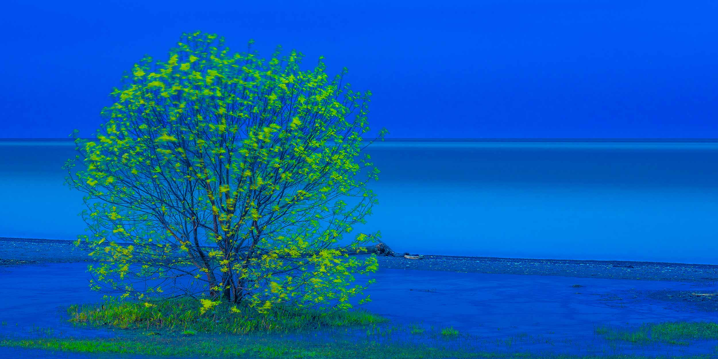 Blue Hour at West Beach